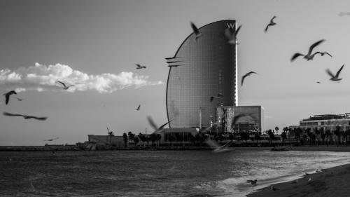 barcelona 2015-7948