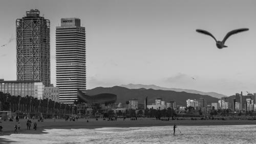 barcelona 2015-7984